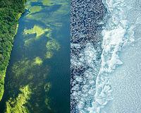 Lynne Buchanan's Antarctic Melting, Cyanobacter in Florida Water