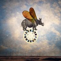Balancing Rhino