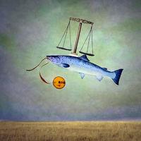 Balancing Salmon