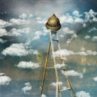 Cloudy Acorn