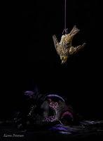 Karen Peterson's The Finch's Dream of Purple
